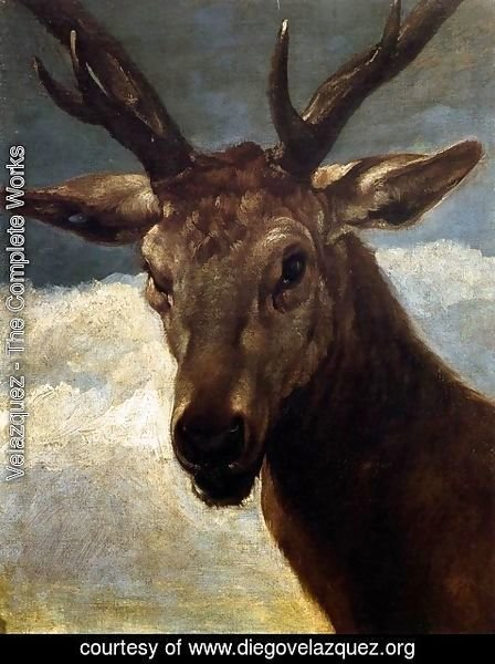 Velazquez - Head of a Stag 1626-27